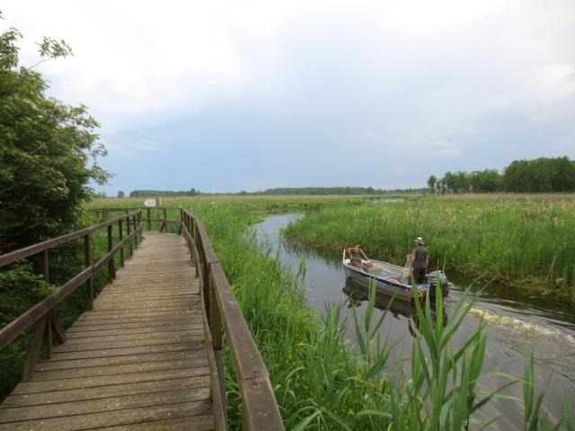 ナレフ国立公園(13景-7) Narwianski National Park 2016/06/01 Photo by Kohyuh